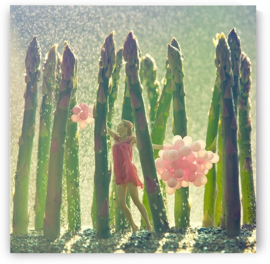Rainy day in asparagus forest by Elena Vizerskaya