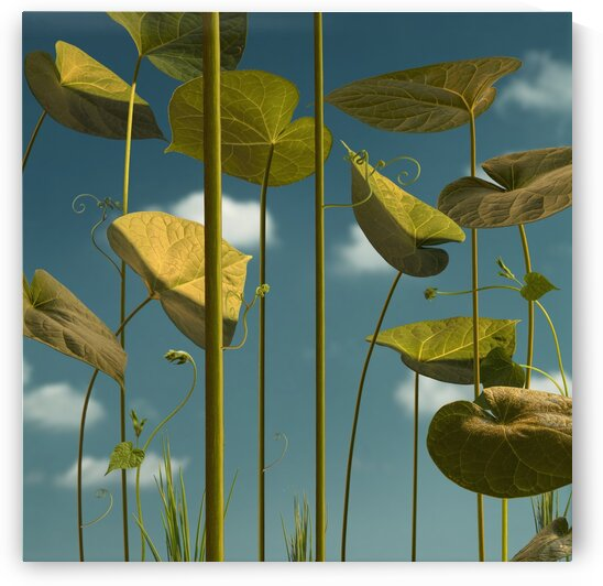 abstract nature by Elena Vizerskaya
