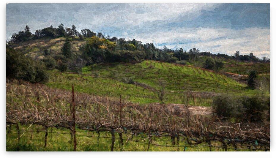 Iron Hub Vineyard Painted by Nicholas
