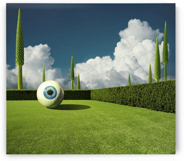Big Eye by Elena Vizerskaya