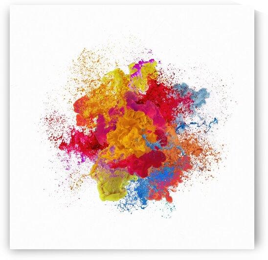 Colors Splash by Elena Vizerskaya