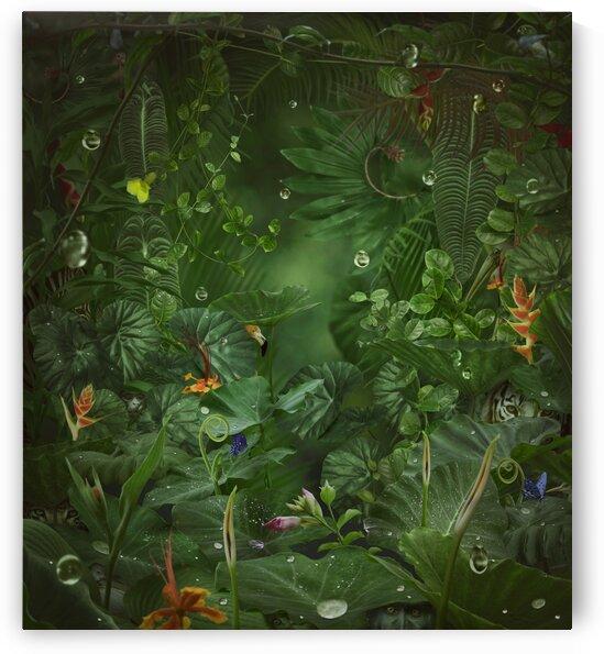 Rainy jungle by Elena Vizerskaya