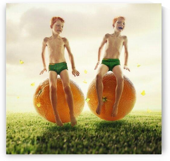Orange twins by Elena Vizerskaya