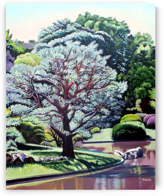 Large Tree in Japanese Garden by Rick Bayers