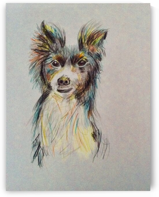 Doggy Doodles 2 by Zaramar Paintings