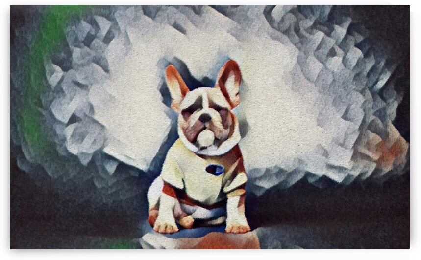 Cute Dog with T-Shirt by Bob Frase