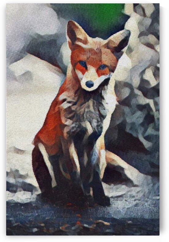 Fox Looking by Bob Frase