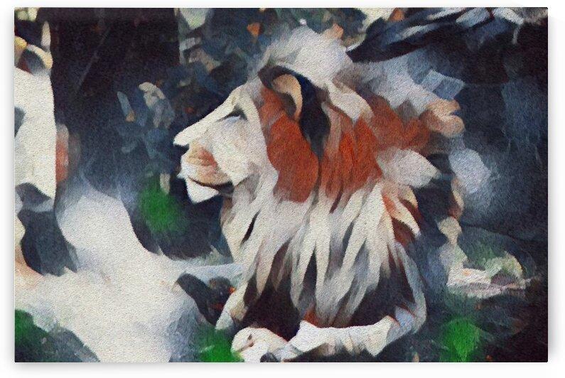 Lion Power by Bob Frase