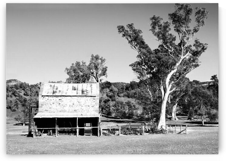 Old Wilpena Station 2 BW  by Lexa Harpell