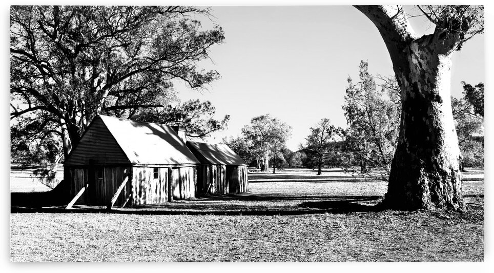 Old Wilpena Station 5 BW by Lexa Harpell