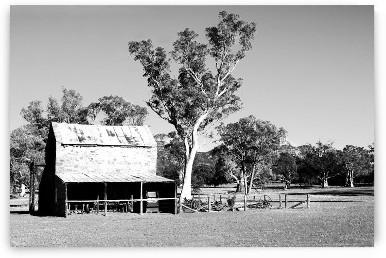 Old Wilpena Station 1 BW by Lexa Harpell