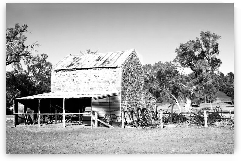 Old Wilpena Station 4 BW  by Lexa Harpell