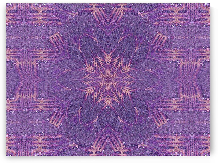 Purple Spark Wildflower by Sherrie Larch
