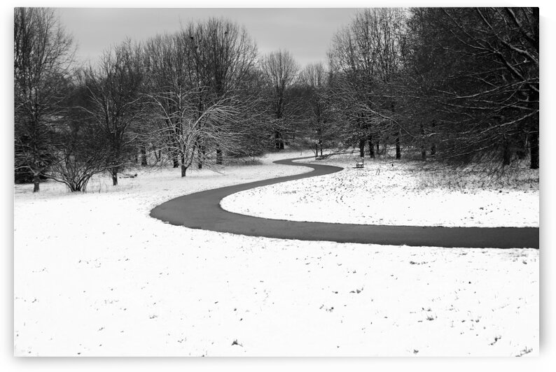Walk On a Winter Day by CreationLife Me