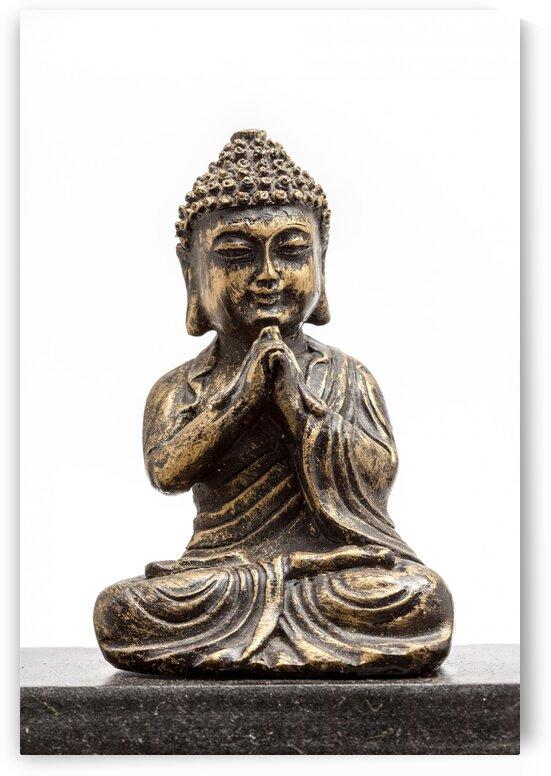 Buddha by Marcel Derweduwen