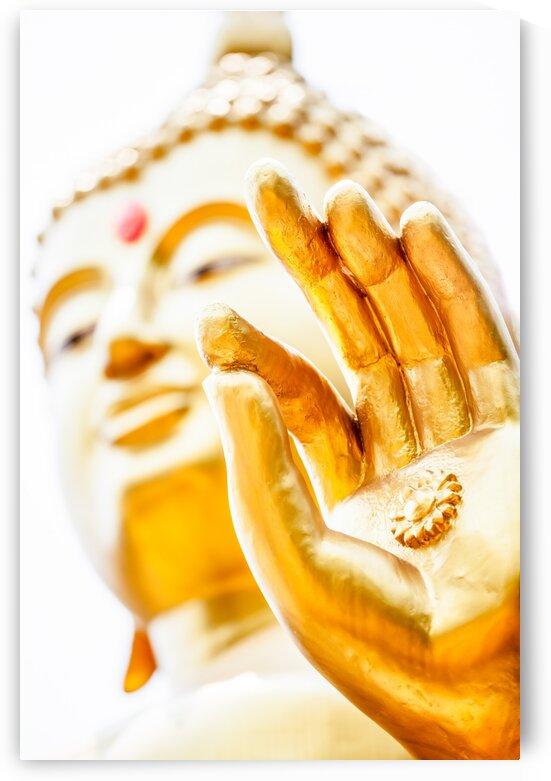 Hand of buddha by Marcel Derweduwen
