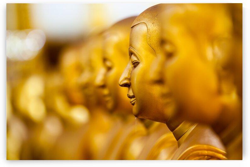 Golden Buddha by Marcel Derweduwen
