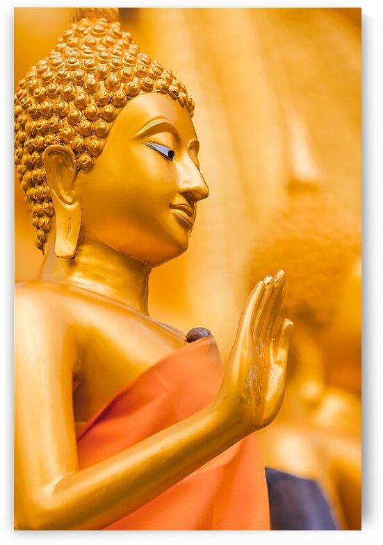 An Golden Buddha by Marcel Derweduwen