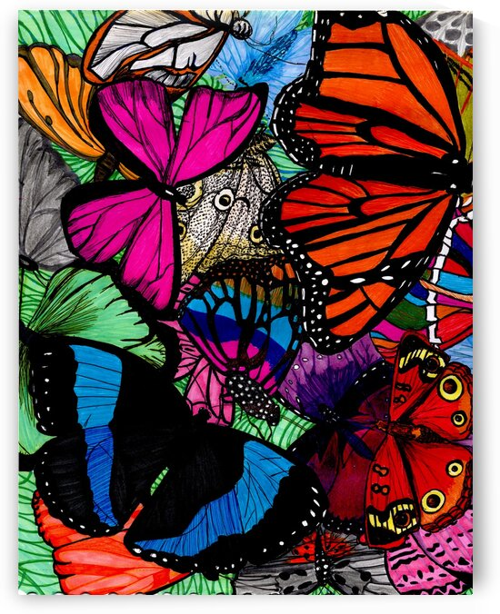 butterflies traditional drawing by Oletydraw