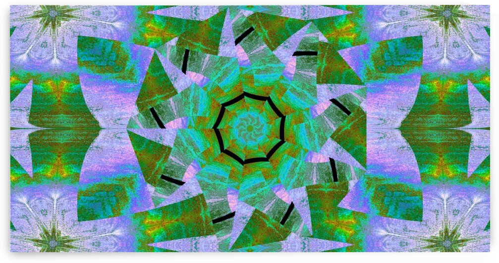 Spinning Lotus 2 by Sherrie Larch