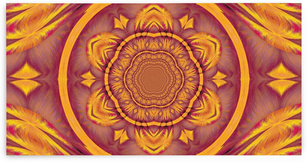 Lotus Of The Sunshine by Sherrie Larch