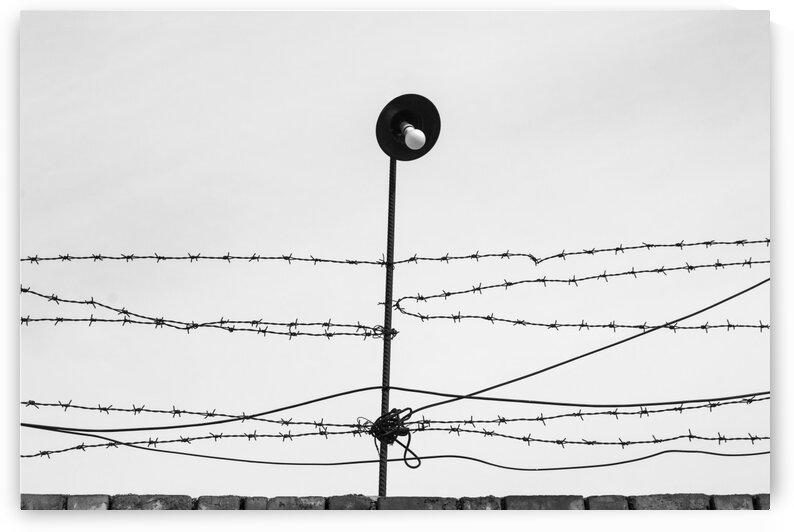 persistence by Arash Azarm