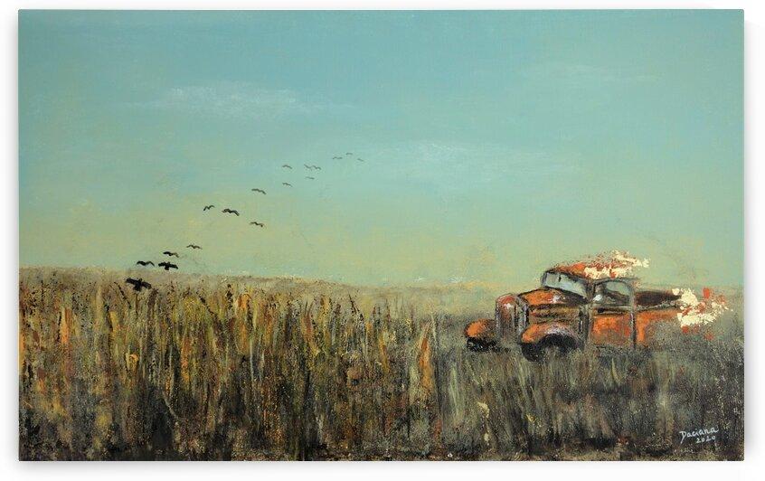 Harvest by Daciana