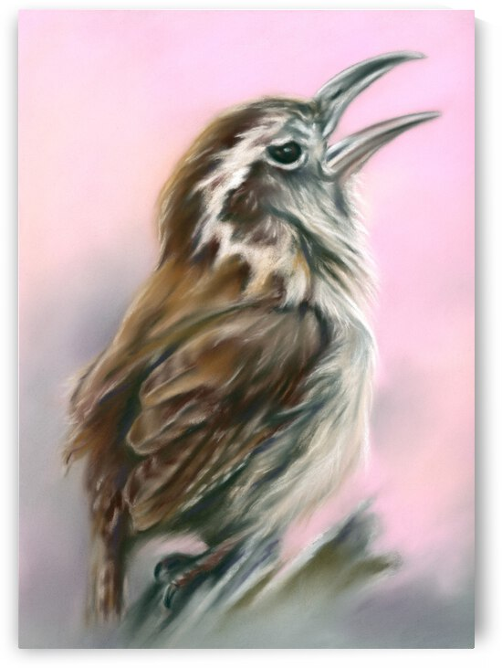 Carolina Wren Greeting the Dawn by MM Anderson