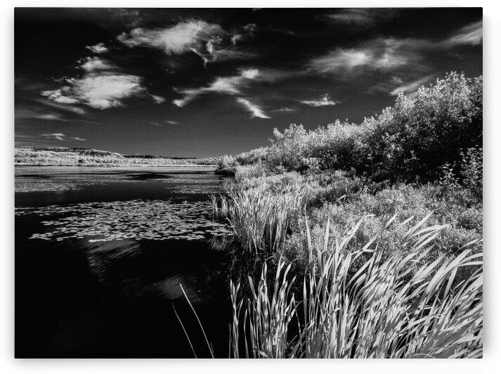 Lake  by Jean-Francois Dupuis