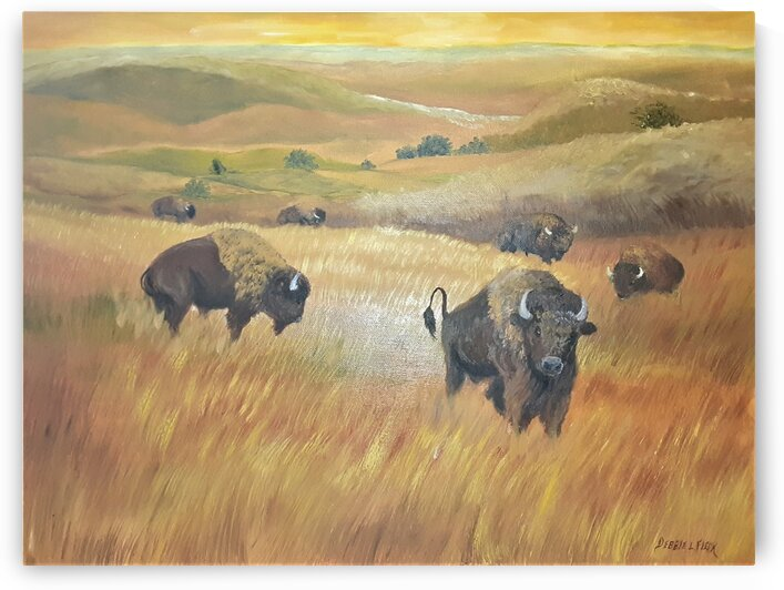 Where The Bison Roam by Debbie L Fleck