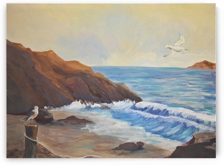 Rocky Point  by Debbie L Fleck