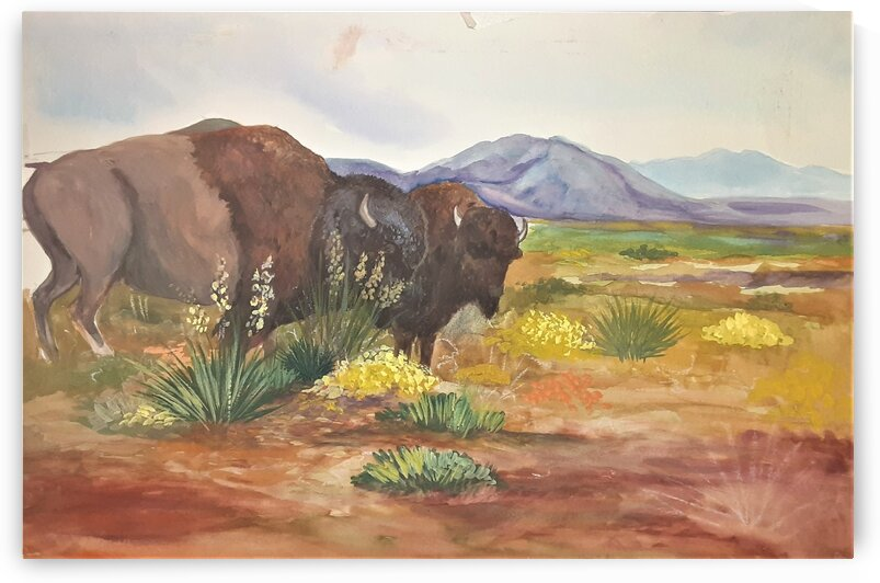 Wondering Bison by Debbie L Fleck