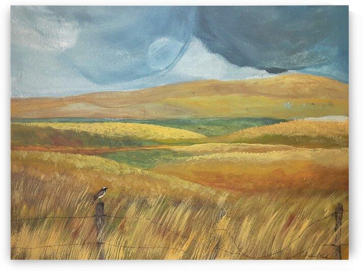 Stormy Skies by Debbie L Fleck