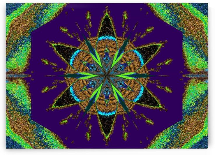 Sky Flower 6 by Sherrie Larch