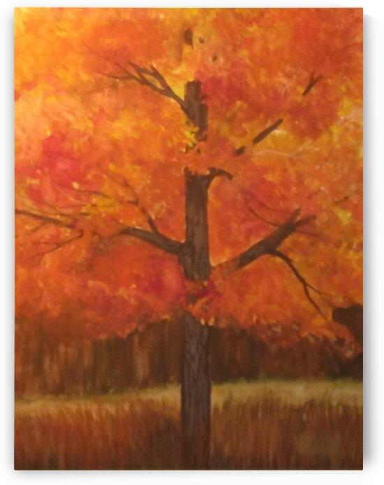 Autumn Blaze by Debbie L Fleck