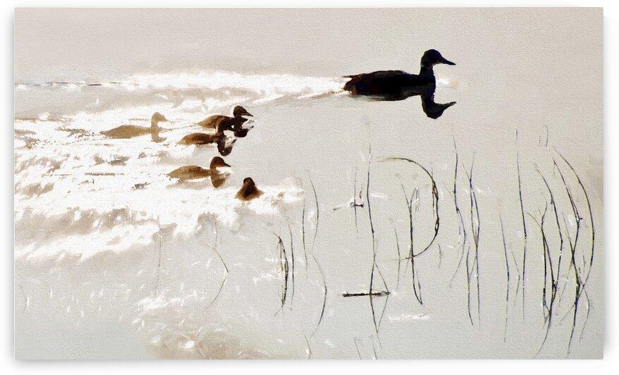Duck Family by Carmel Studios
