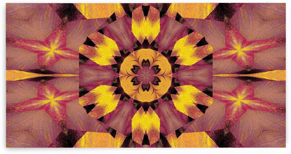 Black Lotus Petal 5 by Sherrie Larch
