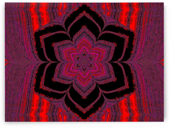 Red And Purple Lotus In Black by Sherrie Larch
