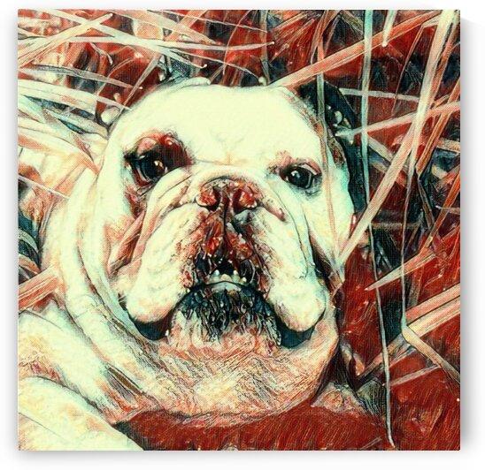 Red Snoop Dog by LeGustavienne