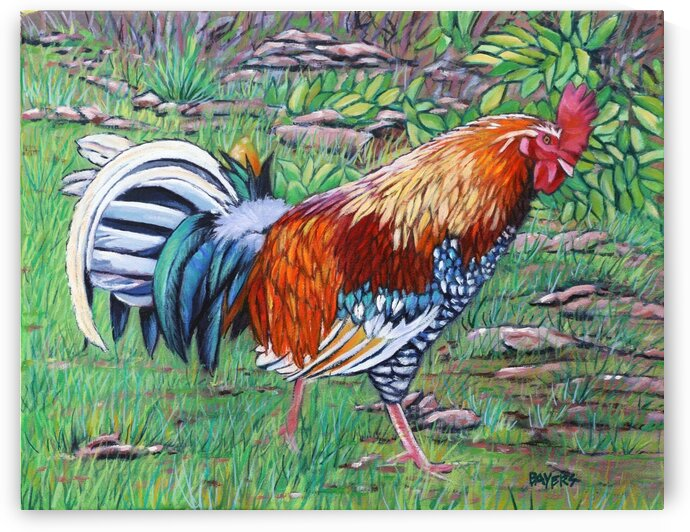 Rooster Strutting by Rick Bayers