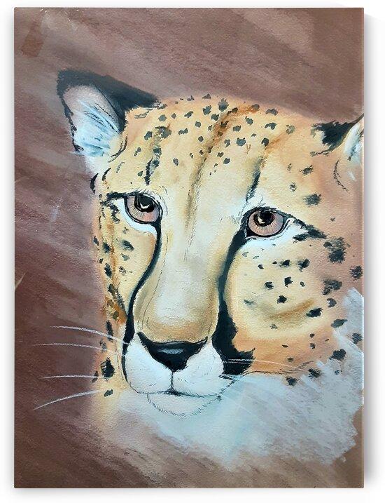 Cheetah by Debbie L Fleck