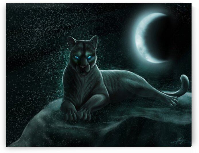 Panther Black Rock Moon by Coolbits Art