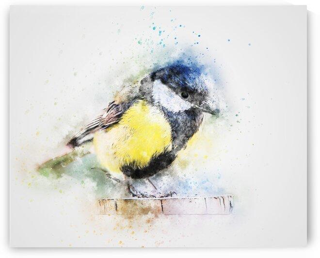 Chickadee by Coolbits Art