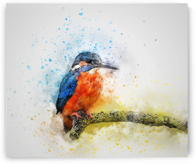 kingfisher by Coolbits Art