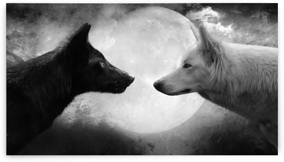 Black and Withe WOLF by Coolbits Art