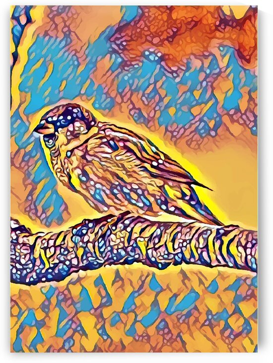 House Sparrow Yellow Blue Mix by Indian Unity Club