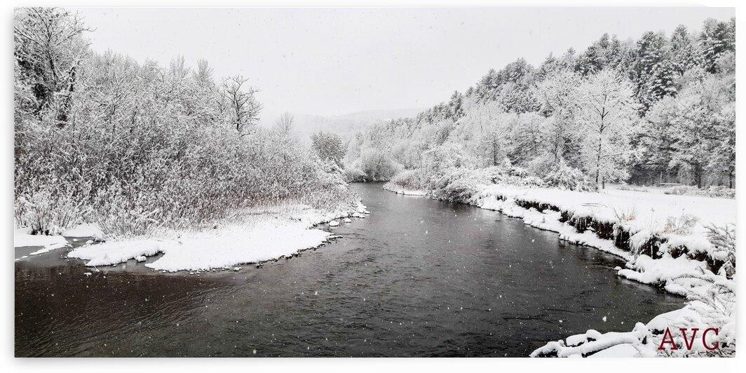 Dog River-- Winter by Angelina V Coronado