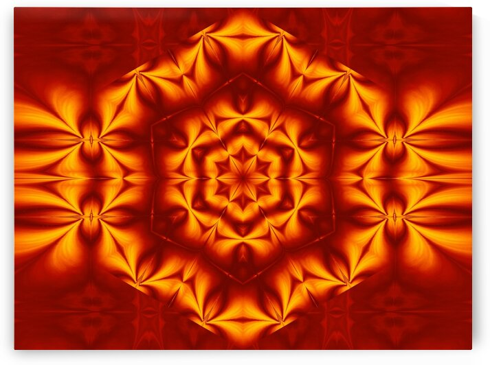 Fire Flowers 17 by Sherrie Larch