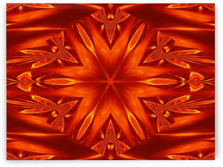 Fire Flowers 22 by Sherrie Larch