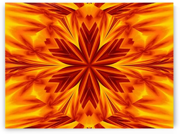 Fire Flowers 39 by Sherrie Larch